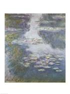 Waterlilies, Nympheas, 1908