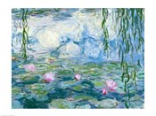 Waterlilies, 1916-19