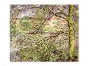 Through the Trees, 1878
