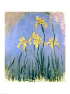 The Yellow Irises, c.1918-25