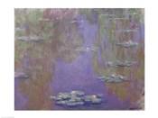 Waterlilies, 1903 (purple)