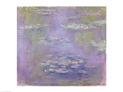 Waterlilies, 1903 (purple)