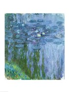 Waterlilies (blue & green vertical)