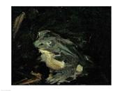 Dejeuner sur l'Herbe, 1863 (frog detail)