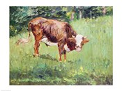 Young Bull in a Meadow, 1881