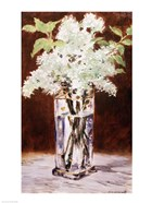 White Lilac in a Crystal Vase, 1882