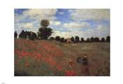 Wild Poppies, near Argenteuil (Les Coquelicots: environs d'Argenteuil), 1873