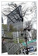 Flatiron Collage