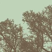 Winter Tree I