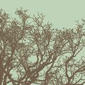 Winter Tree II