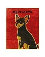 Chihuahua (black and tan)