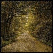 Flannery Fork Road No. 1