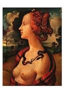 Portrait of Simonetta Vespucci,  c. 1480