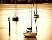 St, Augustine Harbor II - mini