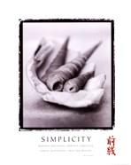 Simplicity - Shells