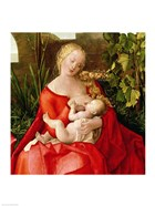 Virgin and Child 'Madonna with the Iris', 1508 - red dress