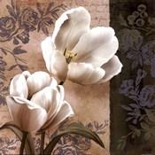 Tulip Fair