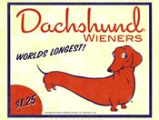 Dachsund Wieners
