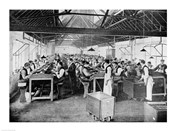 One of the cigar manufacturing departments at Messrs Salmon and Gluckstein's Ltd