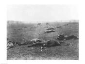 The Harvest of Death, Gettysburg, 1863