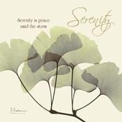 Serenity Gingko