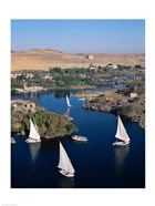 Feluccas on the Nile River, Aswan, Egypt