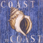 Coastal USA Conch