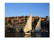 Sailboats in a river, Old Cataract Hotel, Aswan, Egypt