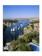 Sailboats In A River, Nile River, Aswan, Egypt Vertical Landscape