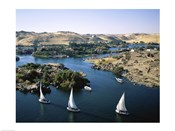 Sailboats In A River, Nile River, Aswan, Egypt Landscape