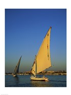 Sailboats sailing in a river, Nile River, Luxor, Egypt