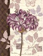 Chelsea Purple I