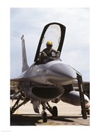 U.S. Air Force  F-16 Falcon Jet Fighter