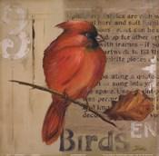 Red Love Birds II