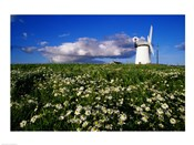 Ballycopeland Windmill, Millisle, Northern Ireland