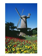 USA, California, San Francisco, Golden Gate Park, windmill