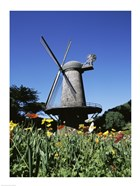 Low angle view of a traditional windmill, Queen Wilhelmina Garden, Golden Gate Park, San Francisco, California, USA