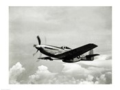 Low angle view of a military airplane in flight, F-51 Mustang
