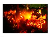 Jack o' lanterns lit up at night, Roger Williams Park Zoo, Providence, Rhode Island, USA