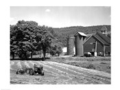 Tractor Raking a Field, East Ryegate, Vermont, USA