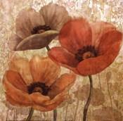 Poppy Allure II