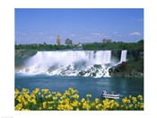 Flowers in front of a waterfall, American Falls, Niagara Falls, New York, USA