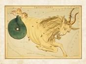Capricornus Zodiac Sign