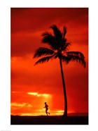 Silhouette of a man running by a palm tree at sunset, Maui, Hawaii, USA