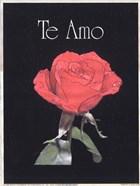 I Love You - Spanish