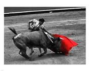 Red Matador III