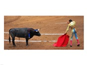 Bull and Matador Stand Off