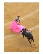 Matador Bullfight