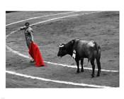 Red Matador I