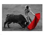Red Matador II